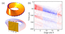 Time-and site-resolved dynamics in a topological circuit