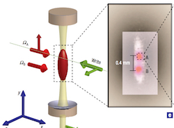Single-photon bus connecting spin-wave quantum memories