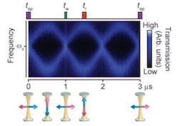 Heralded single-magnon quantum memory for photon polarization states